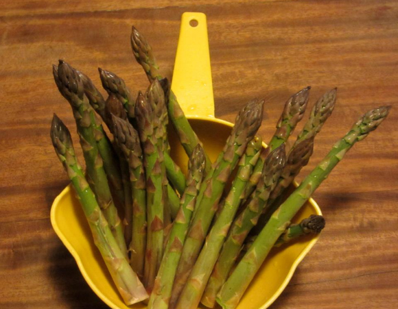 2013 May 12 fresh picked asparagus